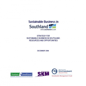 Sustainable Business Strategy - 2008